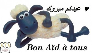 Aid Moubarak dans FETE 559888_573807142655923_2019763723_n-300x173